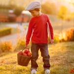 Adorable little boy with basket of apples and book